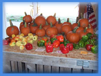 Fresh locally grown fruits and vegetables